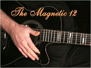 Magnetic Sound Hole Pickups with Acoustic 12 strings